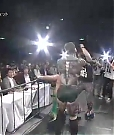 NJPW_Invasion_Attack_201420_1851.jpg